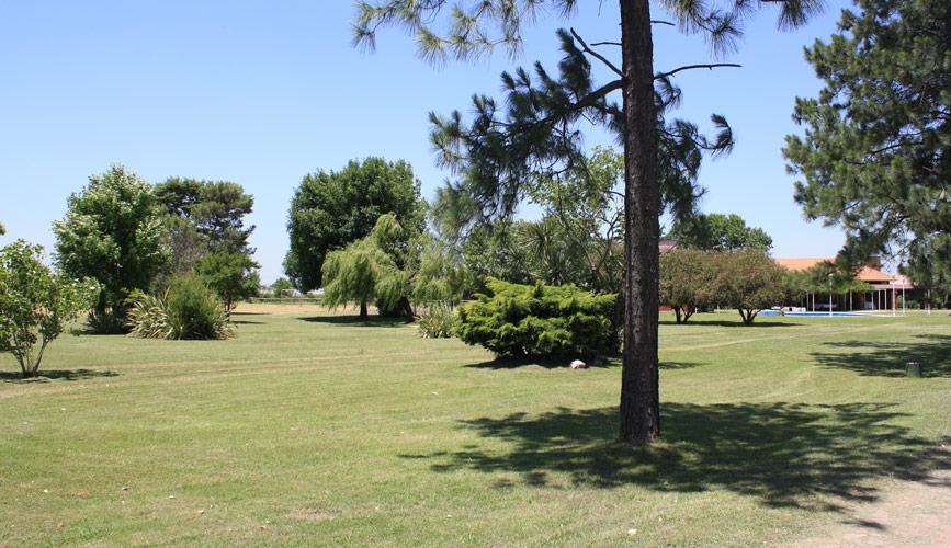 jardin05